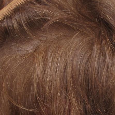 Die Maske von trocken auf den Spitzen und des Haarwuchses